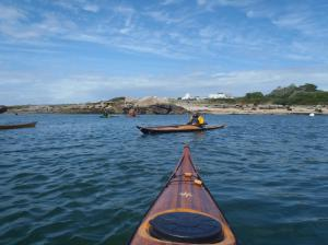 palas groenlandesas nautilus 2017-07-30 15-27-10 (I7)
