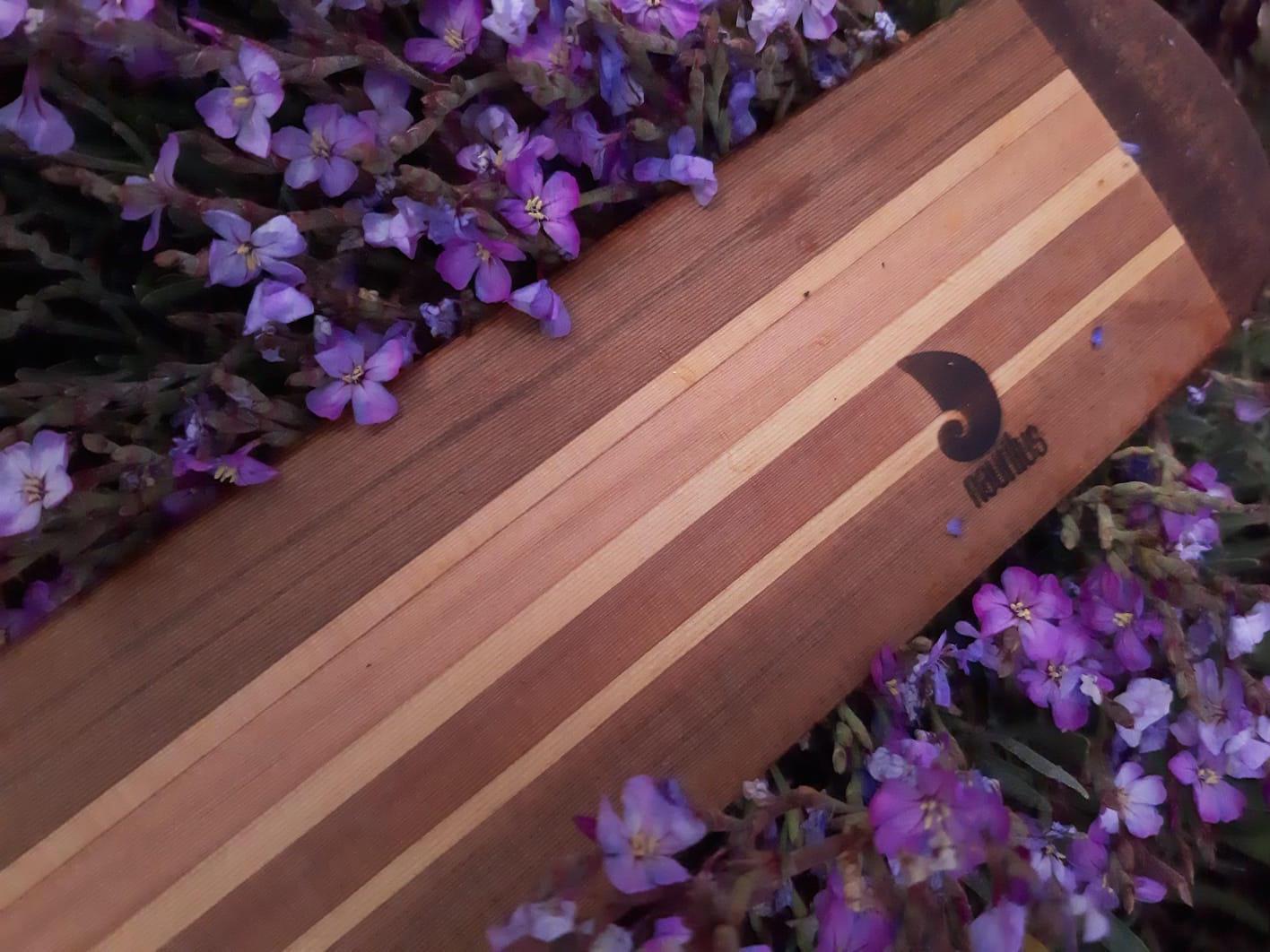 palas groenlandesas nautilus flores 7